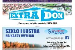 EXTRA-15-2020s09