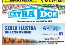 EXTRA-19-2020s09