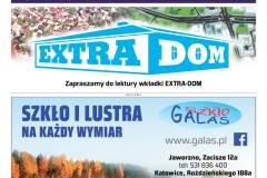 EXTRA-2-2020-s09