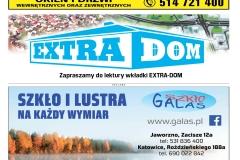 EXTRA-25-2020s11