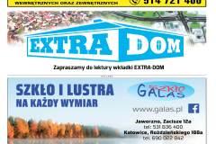 EXTRA-9-2020-s09